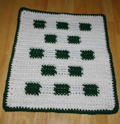 Check It Out Dishcloth