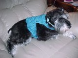 Ribbed Edge Dog Sweater Crochet Pattern