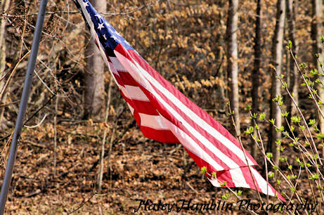 Haley Hamblin Photography - United States Flag
