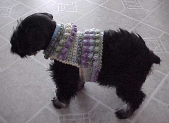 Sawyer's Sweater